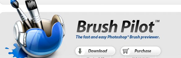 Application Review: Brush Pilot™